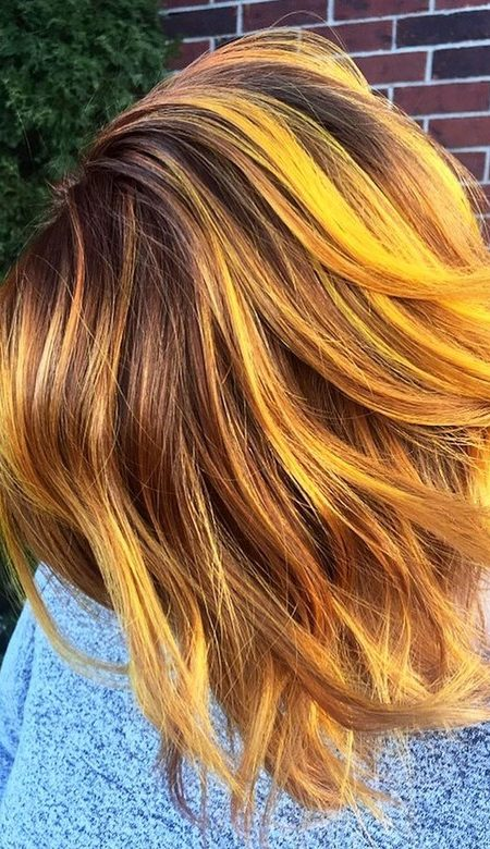 Color de pelo brillante de la nata